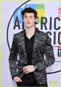 shawn-mendes-2017-american-music-awards-05